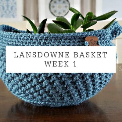 Lansdowne Basket Crochet Pattern Week 1