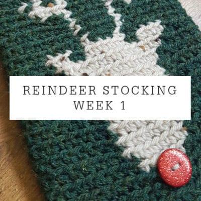 Reindeer Stocking   CAL Week 1